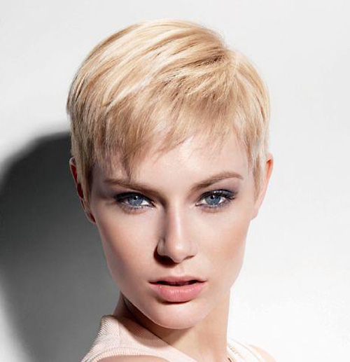 Outstanding 100 Best Pixie Cuts The Best Short Hairstyles For Women 2016 Short Hairstyles Gunalazisus
