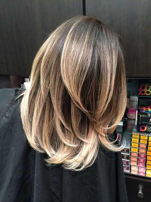 Brown Short Hair with Balayage