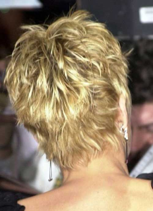 Sharon Stone Pixie Haircut Back View