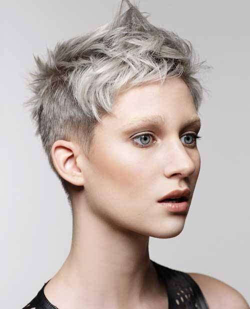 Silver Hairstyle Color for Pixie
