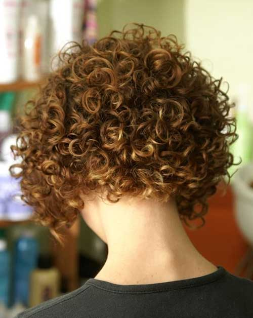 Short Curly Hairstyles Back View 2015