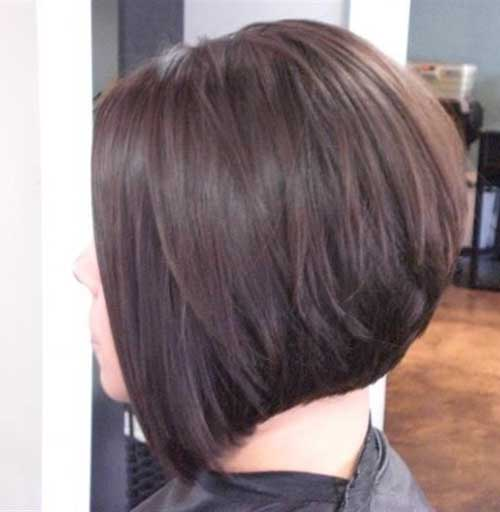 Short Angled Dark Bob Haircuts Ideas Back View