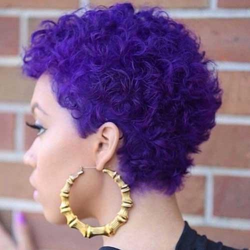 Short Natural Curly Dark Hairstyles