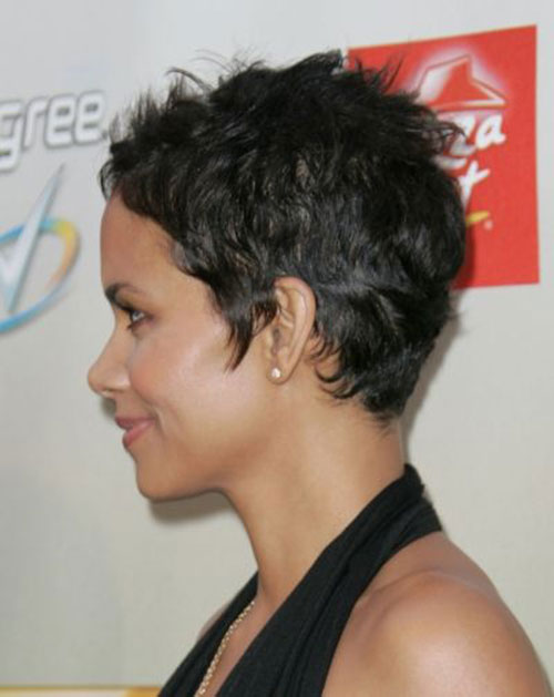 Halle Berry Short Hair Side View Look