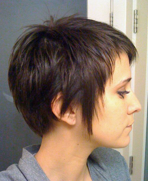 Layered Pixie Haircuts Side View Look