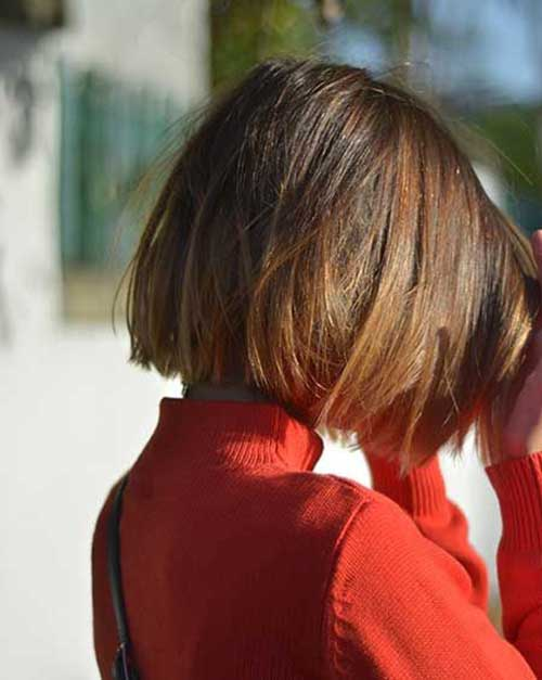 Back View of Line Bob Haircuts for Thick Straight Hair