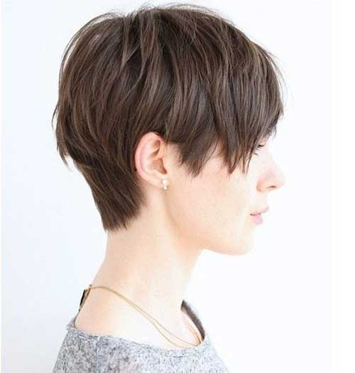 Pixie Short Straight Haircut 2015
