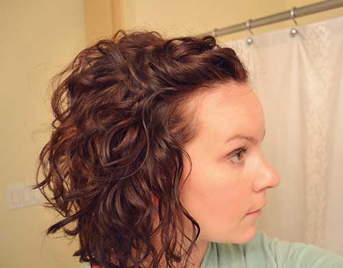 Curly Simple Frizzy Bob