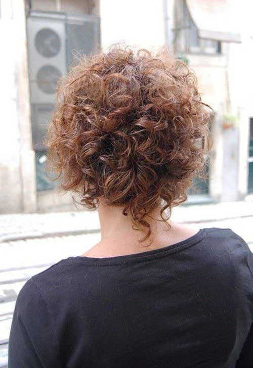 Short Curly Frizzy Hairstyles Back View
