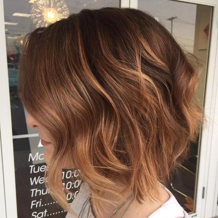 Short Brown Hair 2017 - 13