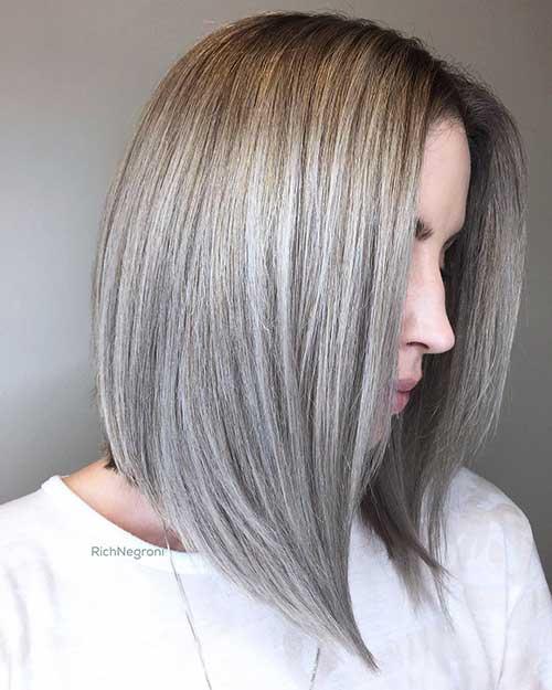 Short Silver Hair 2017 - 13