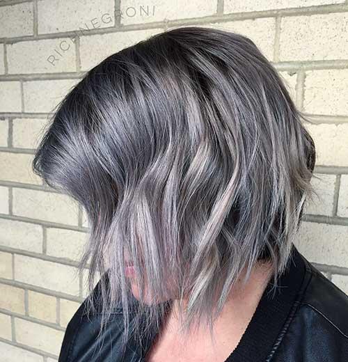 Short Silver Hair - 14