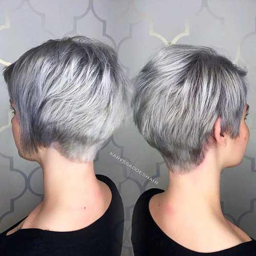 Short Silver Hair 2017 - 19