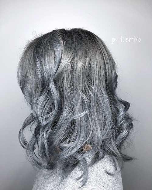 Short Silver Hair - 6