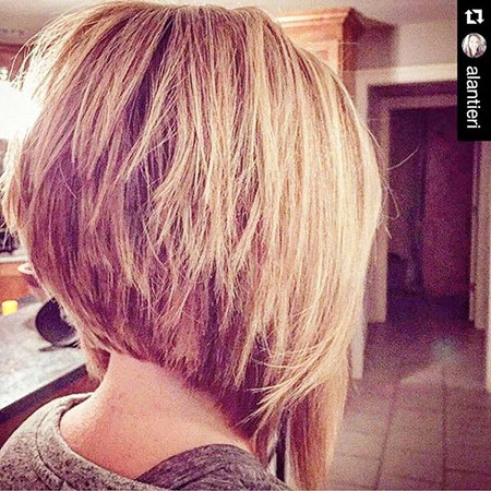 Bob Layered Haircuts Women
