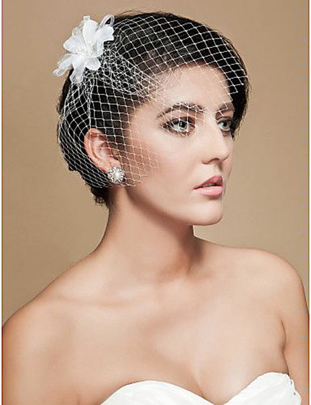 Veil Wedding Blusher Birdcage