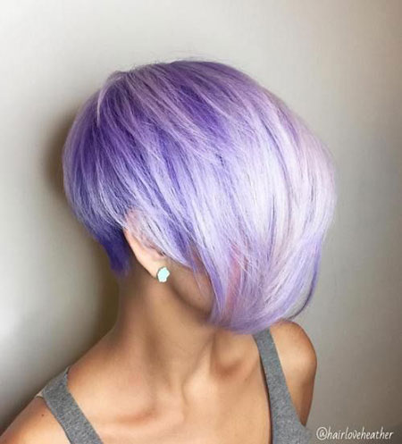 Pixie Bob Purple Pastel