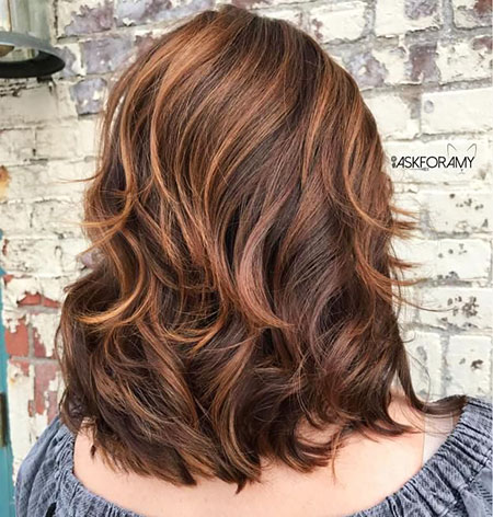 Hair Brown Medium Dark