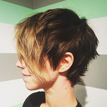 Pixie Straight Short Choppy